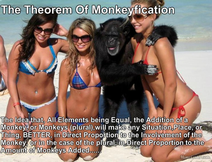 The-Monkey-Manifesto.jpg (447 KB)
