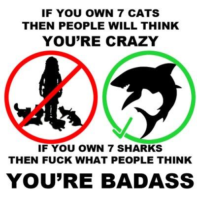 7_sharks.png (149 KB)