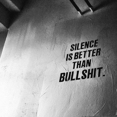 silence-vs-bullshit.jpg (55 KB)