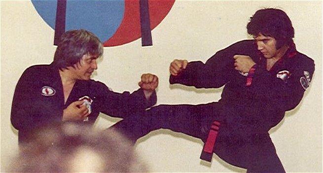 elvis_karate_1.jpg (50 KB)