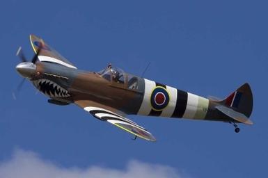 Spitfire-in-air-side.jpg (45 KB)