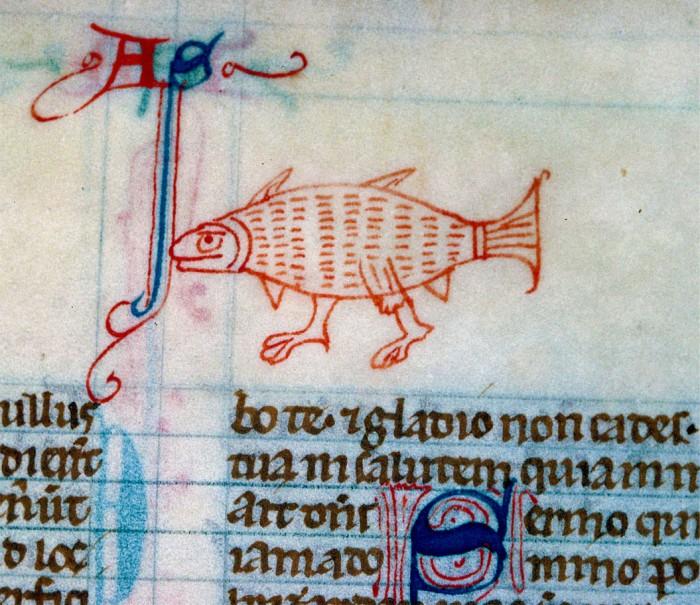 walking-fish.jpg (366 KB)