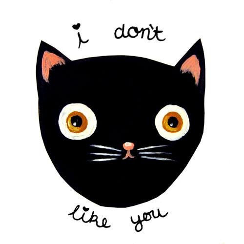 cat-dont-like.jpg (56 KB)