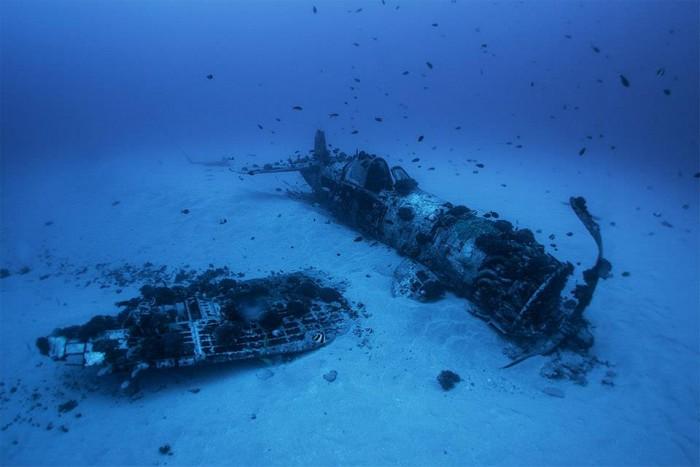 under water 1000371 547416311981737 1885782538 n 700x467 Under Water water skin diving interesting diving