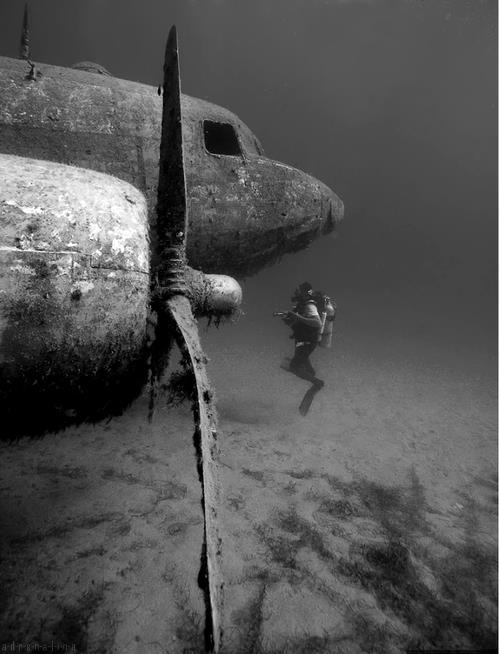 underwater 295393 477093279014041 1769762245 n Under Water water skin diving interesting diving