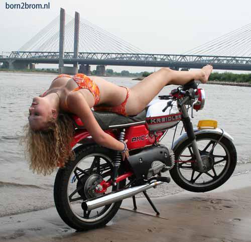 bikes-550043_490147057698845_748838060_n.jpg (35 KB)