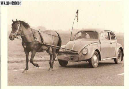 VW-19907_550267708353446_1385203153_n.jpg (24 KB)