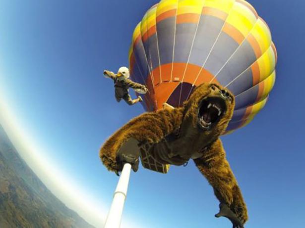 bear-daily-wtf-012-11262013.jpg (155 KB)