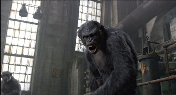angryape Angry ape pissed off ape Matt Reeves Dawn of the Planet of the Apes