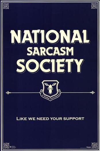 Sarcasm.jpg (25 KB)