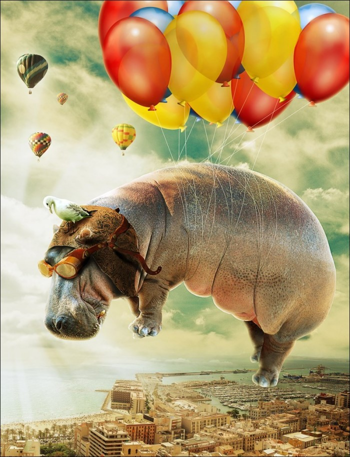 Hippo.jpg (261 KB)