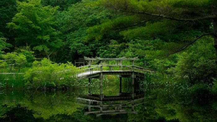 1cd6d2662b58f13325e22406079ecbc3 700x394 bridge  Wallpaper Photography bridge