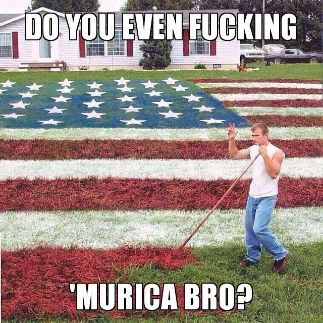 1406682320366 Do you even Murrica? Politics Humor Fourth Of July