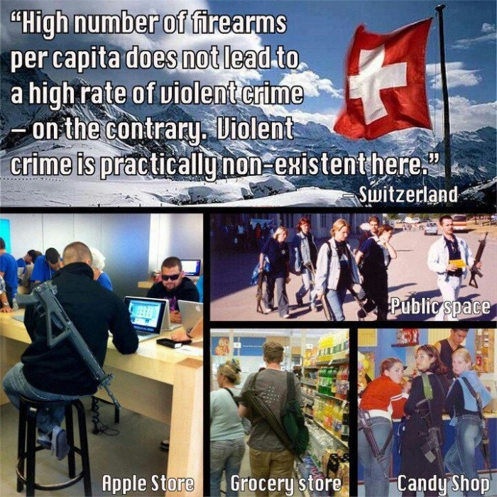 1408480122274 700x700 Swiss Guns Politics Humor