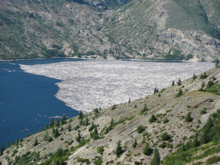 IMG 3139 700x525 Mt St Helens wtf volcano Nature Mt St Helens interesting awesome