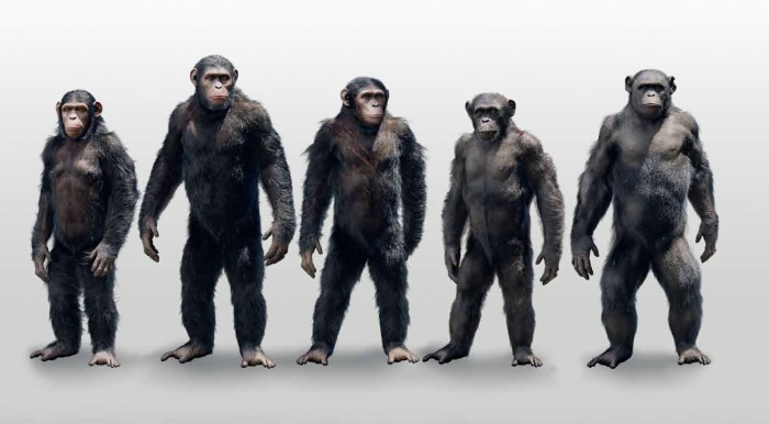 dawn of the planet of the apes concept art 23 700x386 Dawn of the Planet of the Apes concept art Matt Reeves Dawn of the Planet of the Apes concept art Andy Serkis