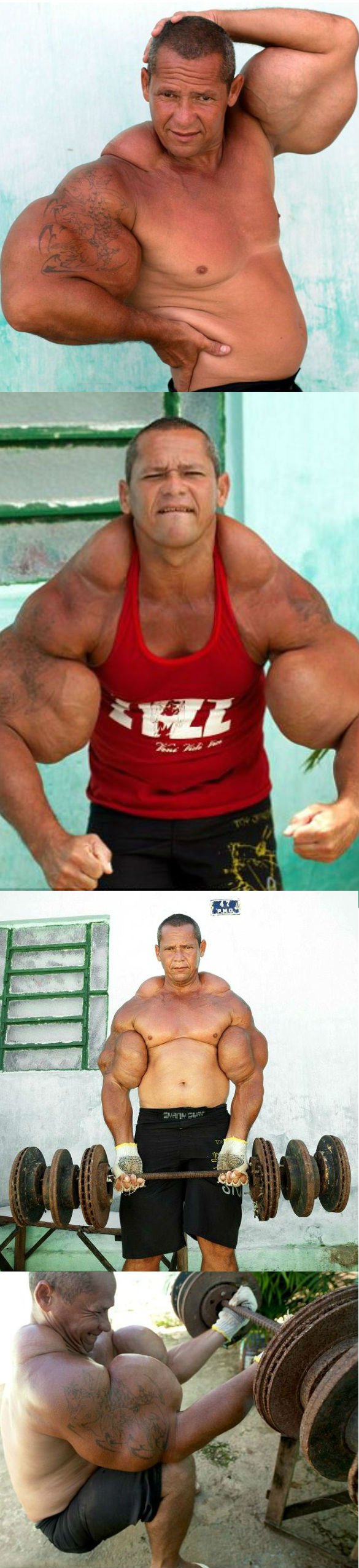 z1 Body Builders wtf NeSFW