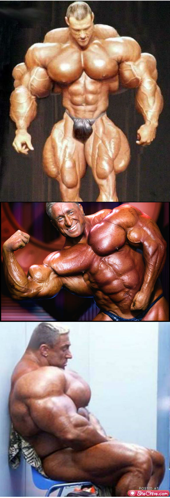 z3 Body Builders wtf NeSFW