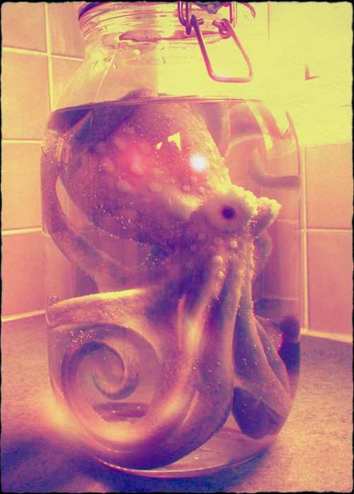 Jar-of-Cthulhu.jpg (161 KB)