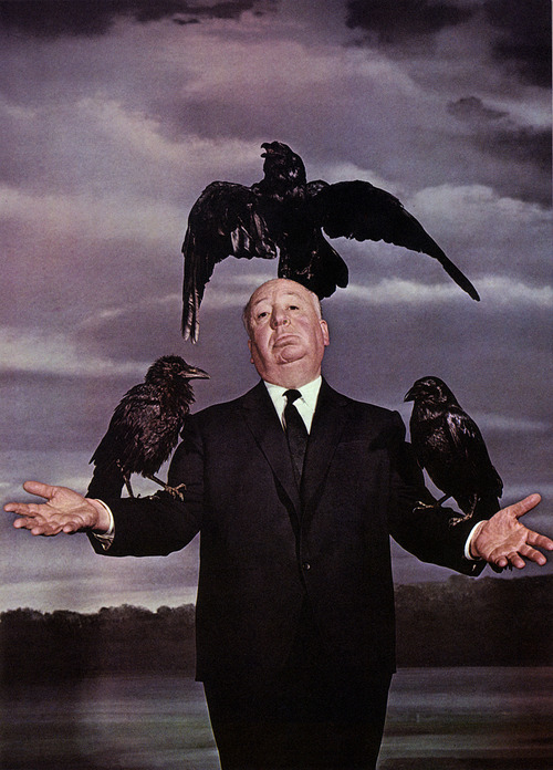 hitchravens The Birds is coming. The Birds ravens Alfred Hitchcock 1963