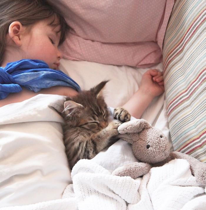 thula-therapy-cat-autistic-artist-iris-grace-3.jpg (157 KB)