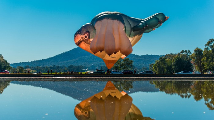 skywhale3.jpg (284 KB)