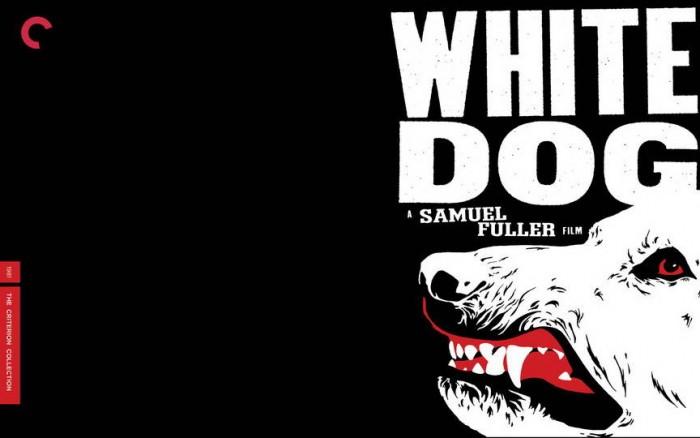 whitedog.jpg (54 KB)