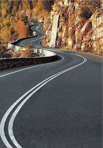 road-559563_10151486482238040_376680746_n.jpg (46 KB)
