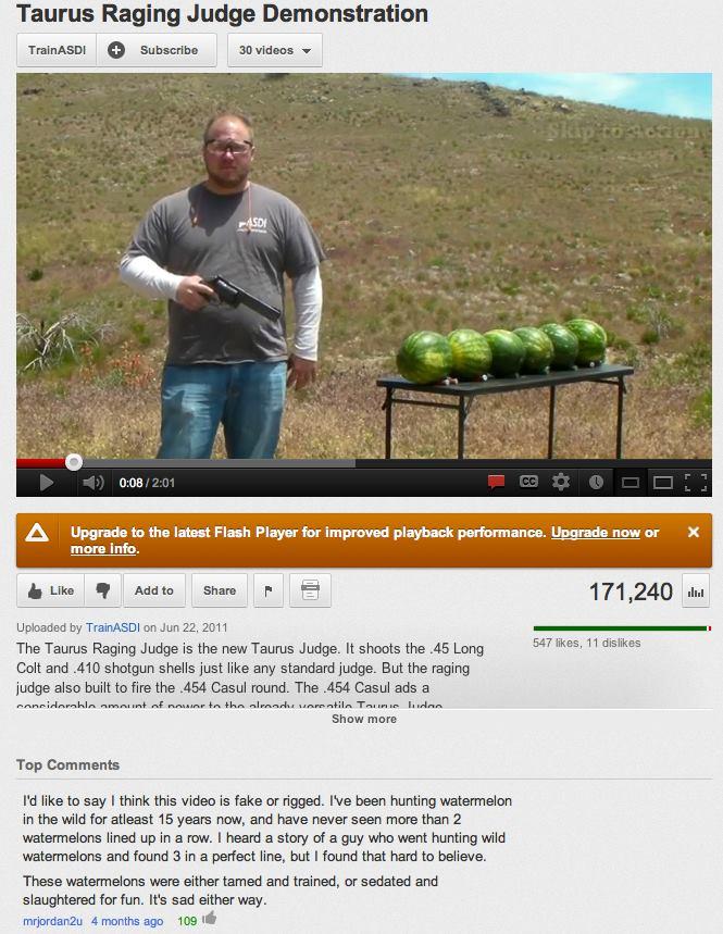 watermelonhunt.jpg (101 KB)