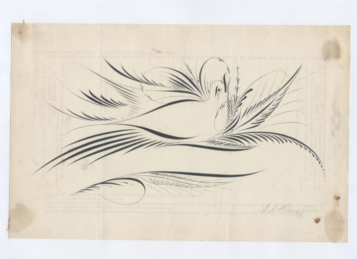 IAMPETH scrapbook 2 0113 700x509 Calligraphy Bird Art