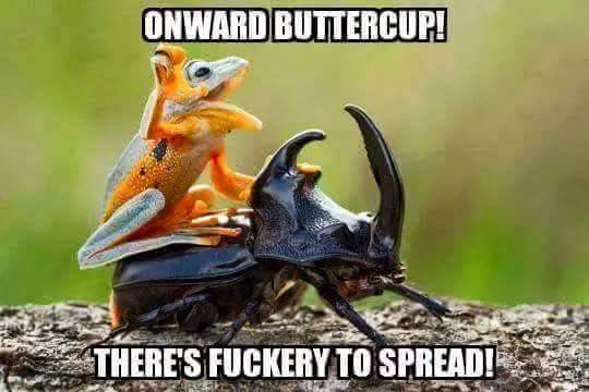 Onward-Buttercup.jpg (29 KB)