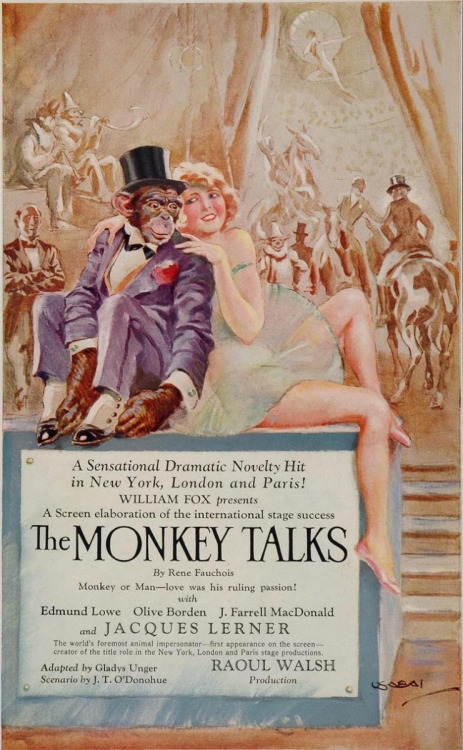 monkeytalks.jpg (144 KB)