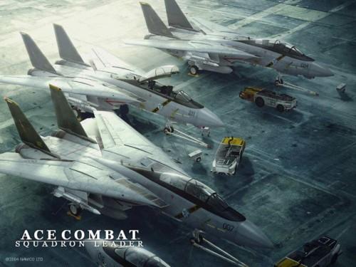 Ace_Combat__Squadron_Leader.jpg (131 KB)