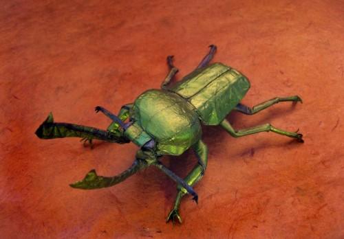 beetle.jpg (127 KB)