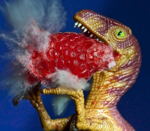 explody04 500x437 Exploding Barbie Fruit Rack Weapons Toys Food