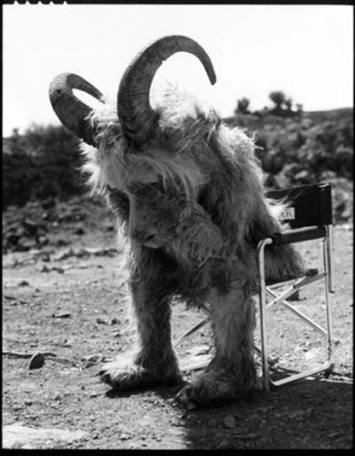 goat boy sad 389x500 Sad Goat wtf Movies