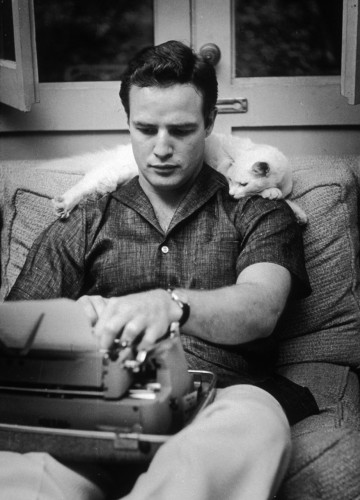 Marlon Brando and Laurence Olivier + cats