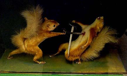 SquirrelDuel.jpg (33 KB)