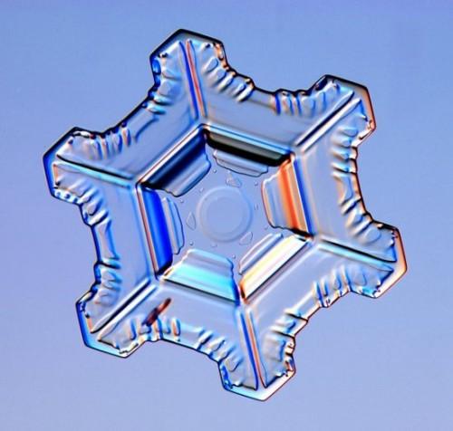snowflake2.jpg (50 KB)