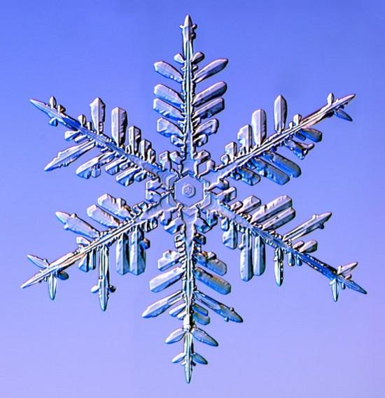 snowflake7.jpg