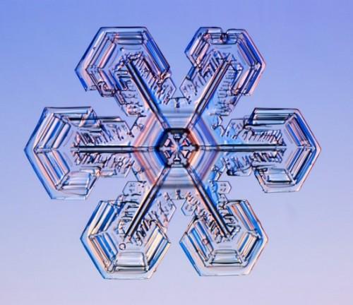 snowflake9.jpg (83 KB)