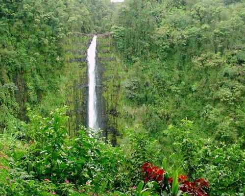 akaka falls11280x1024 500x400 Akaka Falls  Wallpaper Nature