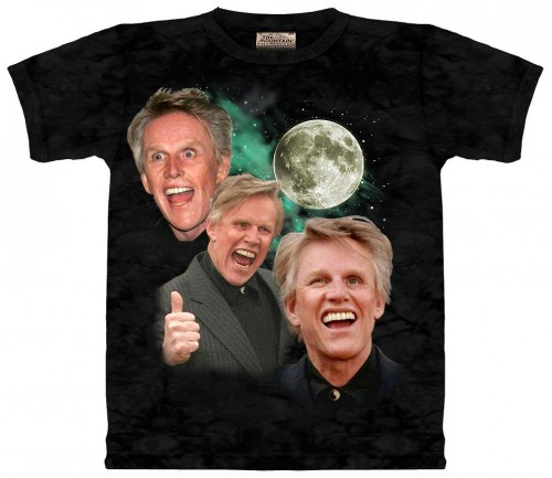 4168557622 0afb5a7df3 o 500x433 Three Busey Moon Humor