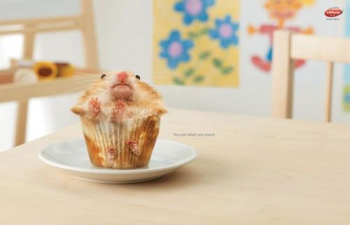 cupcake.jpg (214 KB)