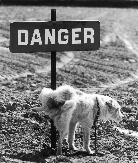 Danger.png (339 KB)
