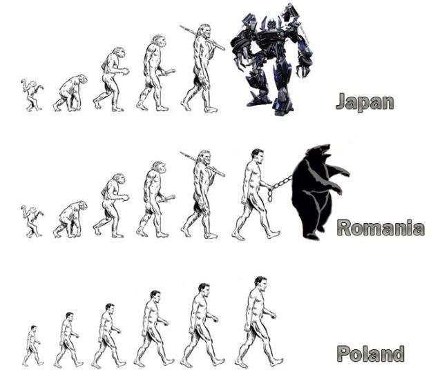 evolution_02.jpg (46 KB)