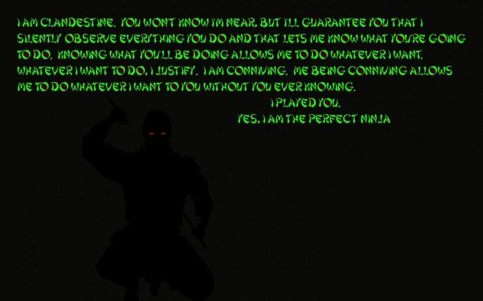 ninja.jpg (353 KB)