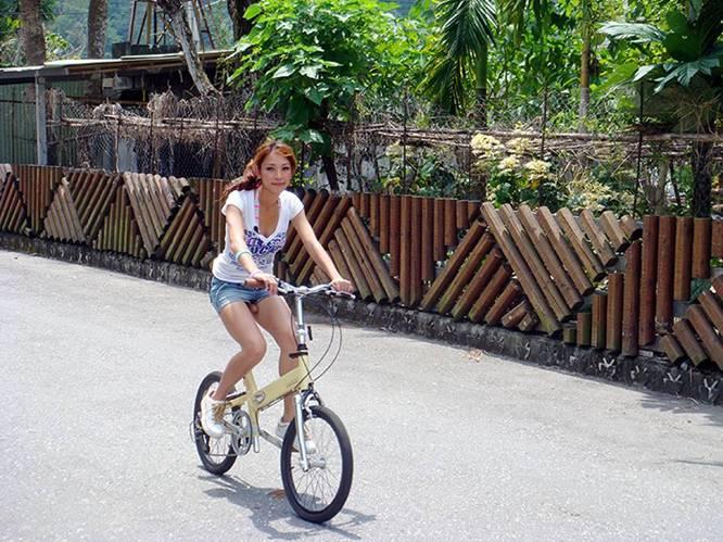 Bike-Seat-Color-Choice.jpg (80 KB)