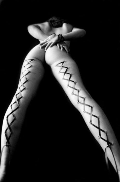 legs.jpg (34 KB)