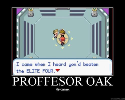 oak.jpg (34 KB)